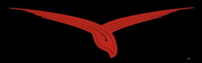 Redhawk Report